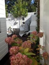 Autumn colors in my garden