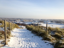 Dunes in the Snow