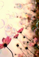 Bubbles & Flowers ;)